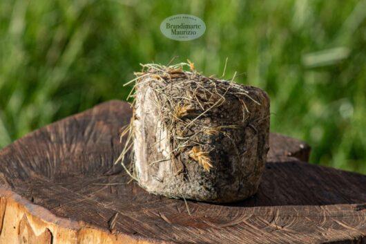 Formaggio pecorino affinato nel fieno